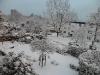 schöner Schnee
