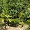Tubigon Hillpark
