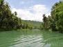 Loboc River Tour & Tarsier Affen