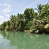 Loboc River Tour