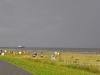 cuxhaven-026